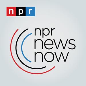 Podcast NPR News